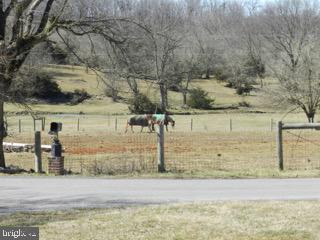Horses grazing view from front yard - 918 WADESVILLE RD, BERRYVILLE