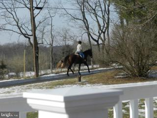 Equestrians riding down the country road - 918 WADESVILLE RD, BERRYVILLE