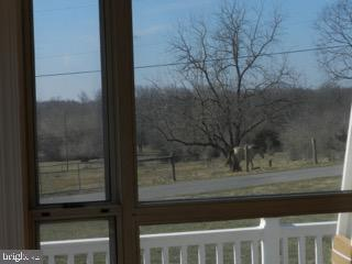 View of Horses from Family Room - 918 WADESVILLE RD, BERRYVILLE