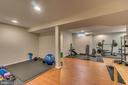 Basement Home Gym - 12 PIERRE EMMANUEL CT, FREDERICKSBURG
