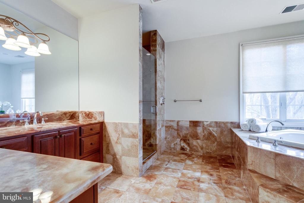 Master bath w/ jetted tub & DUAL headed shower - 1847 HUNTER MILL RD, VIENNA