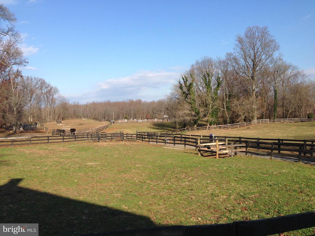 pasture - 36042 JOHN MOSBY HWY, MIDDLEBURG