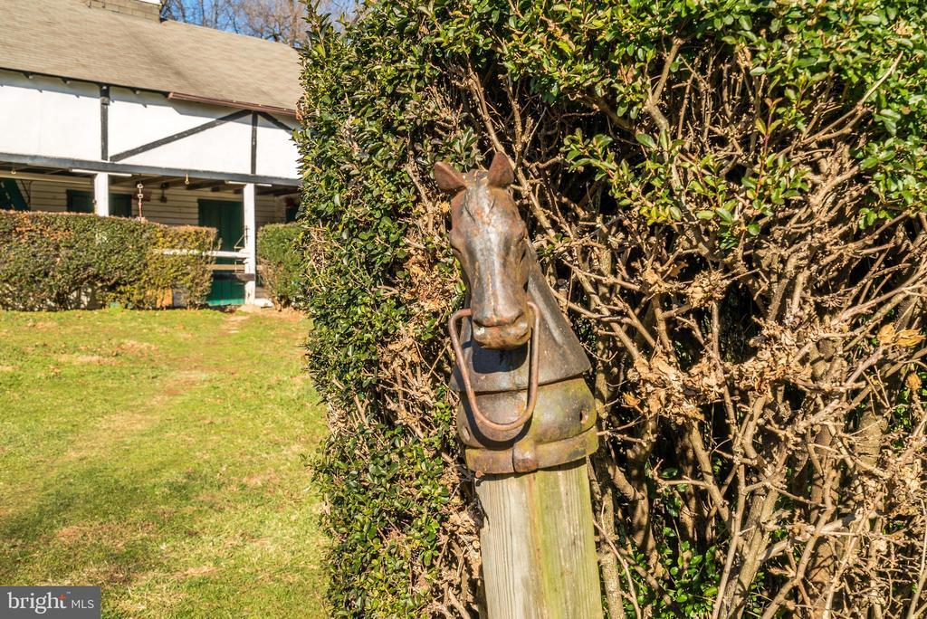 Equestrian history - 36042 JOHN MOSBY HWY, MIDDLEBURG