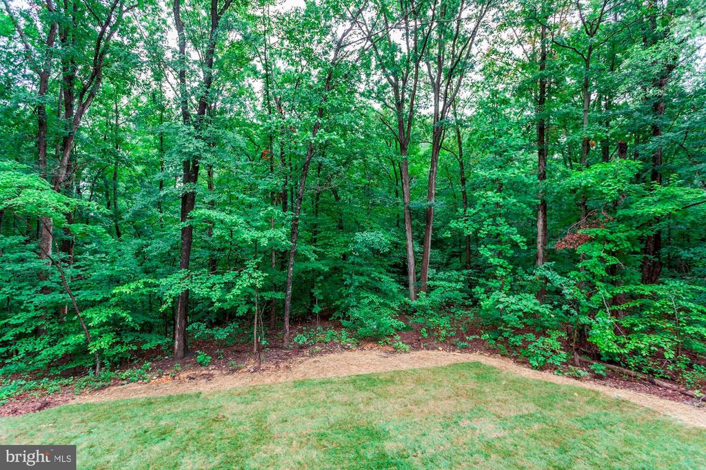Wooded NON HOA Lots! - 004 BETHEL CHURCH RD, FREDERICKSBURG