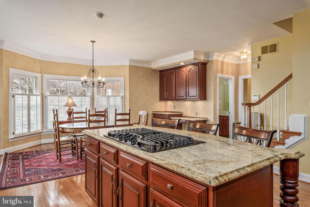 Granite Counters, Gas Cooktop - 35190 DORNOCH CT, ROUND HILL