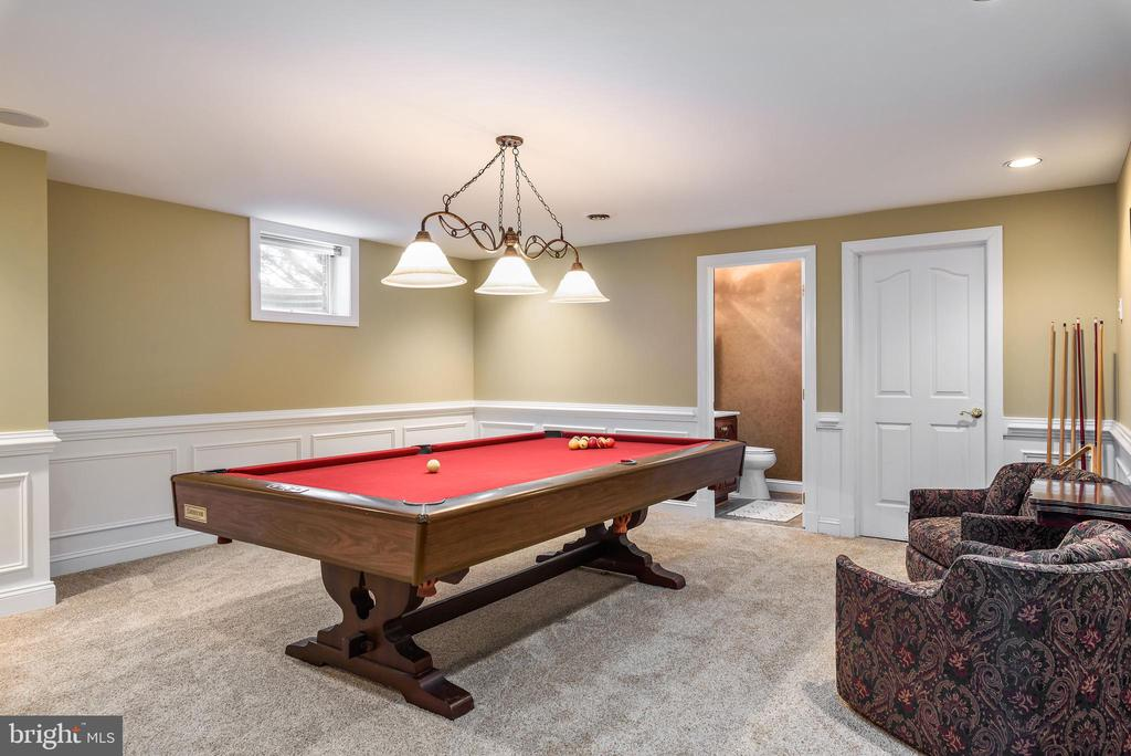 Lower Level Billiards Room, - 35190 DORNOCH CT, ROUND HILL