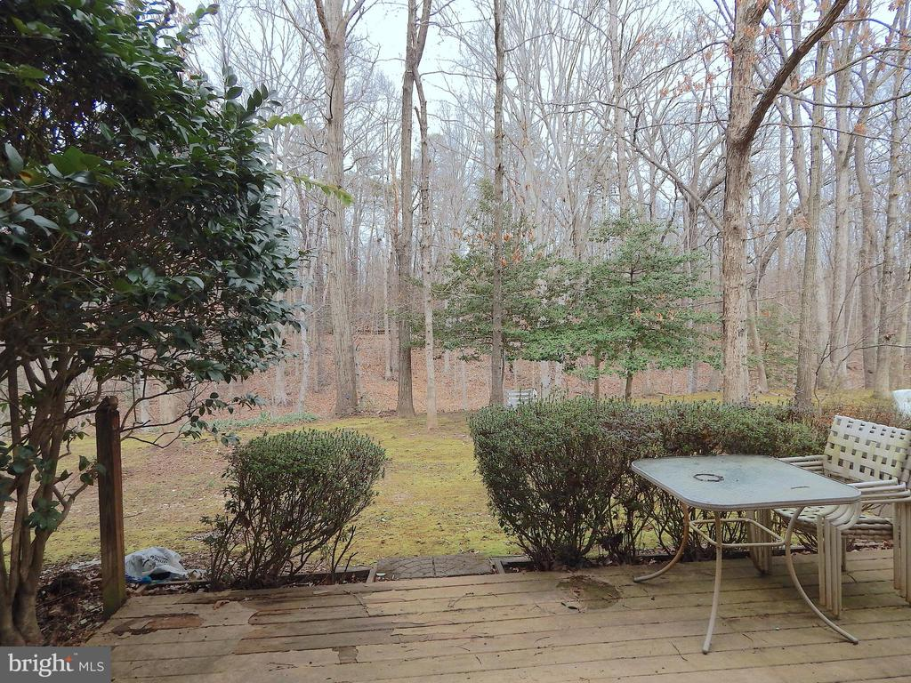Picturesque view from french doors - 444 GREENBRIER CT #444, FREDERICKSBURG