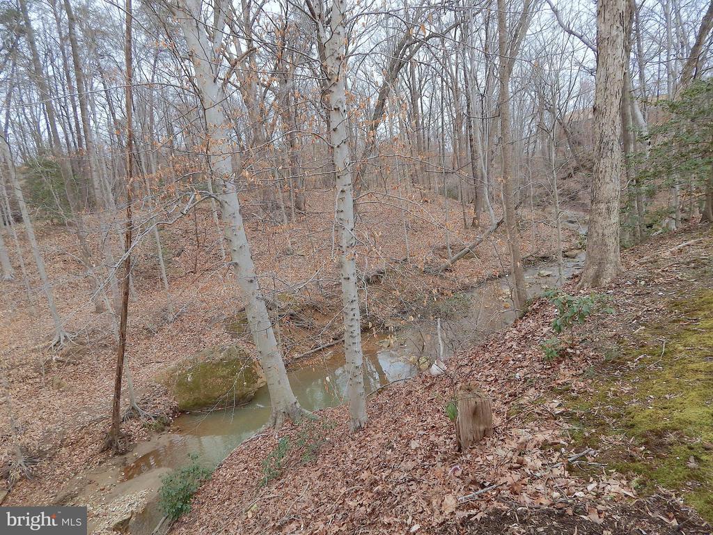 View of trickling stream - 444 GREENBRIER CT #444, FREDERICKSBURG