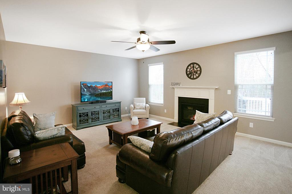 Large open Family Room with fireplace - 181 MILL RACE RD, STAFFORD