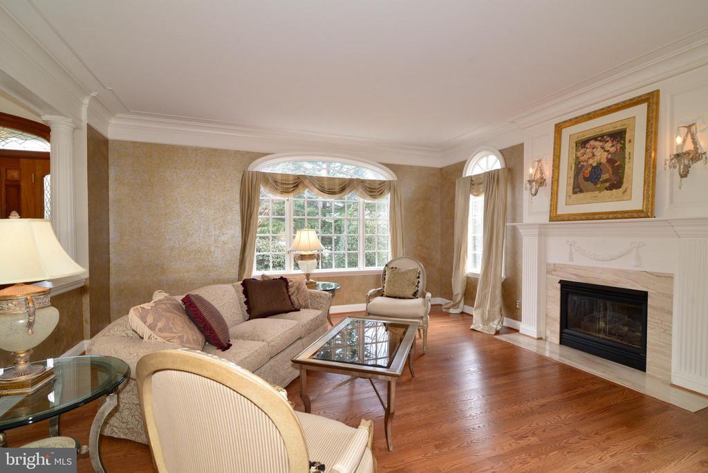 Living Room - 11371 JACKRABBIT CT, POTOMAC FALLS