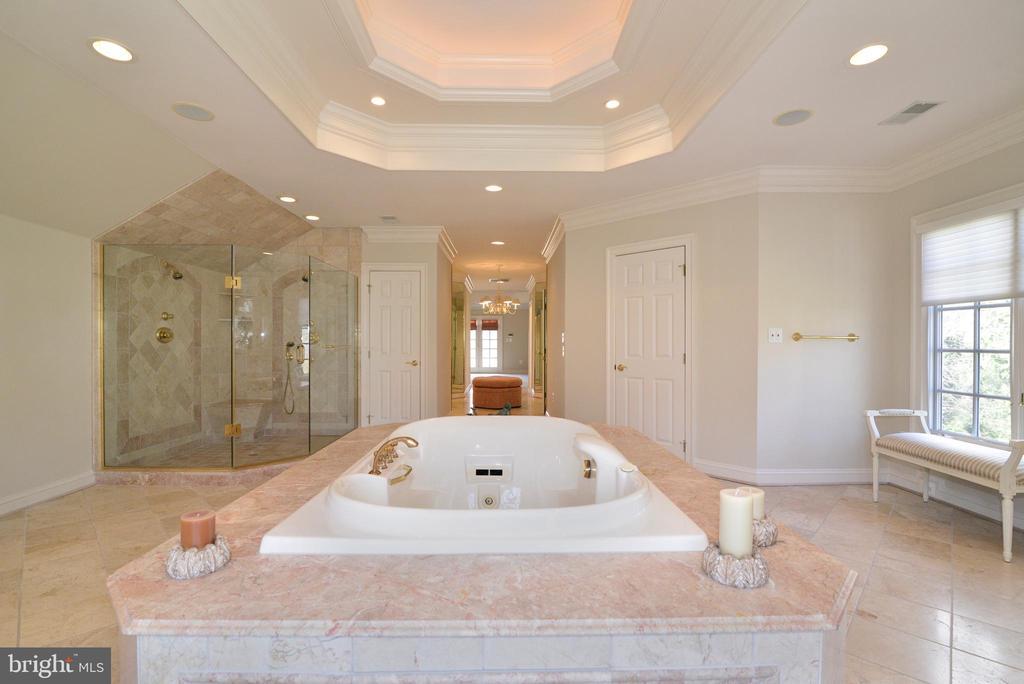 Master Bathroom - 11371 JACKRABBIT CT, POTOMAC FALLS