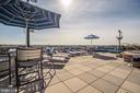 Rooftop Sundeck - 1021 N GARFIELD ST #445, ARLINGTON