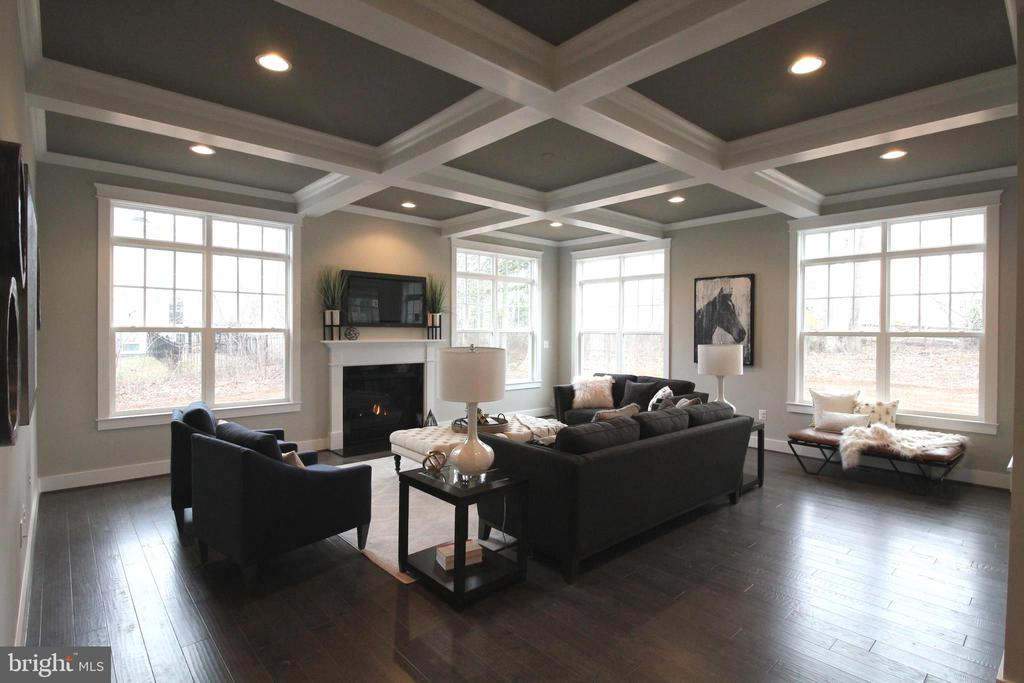 Cozy Fireplace & Beautiful Cofferred Ceiling - 3005 WEBER PL, OAKTON