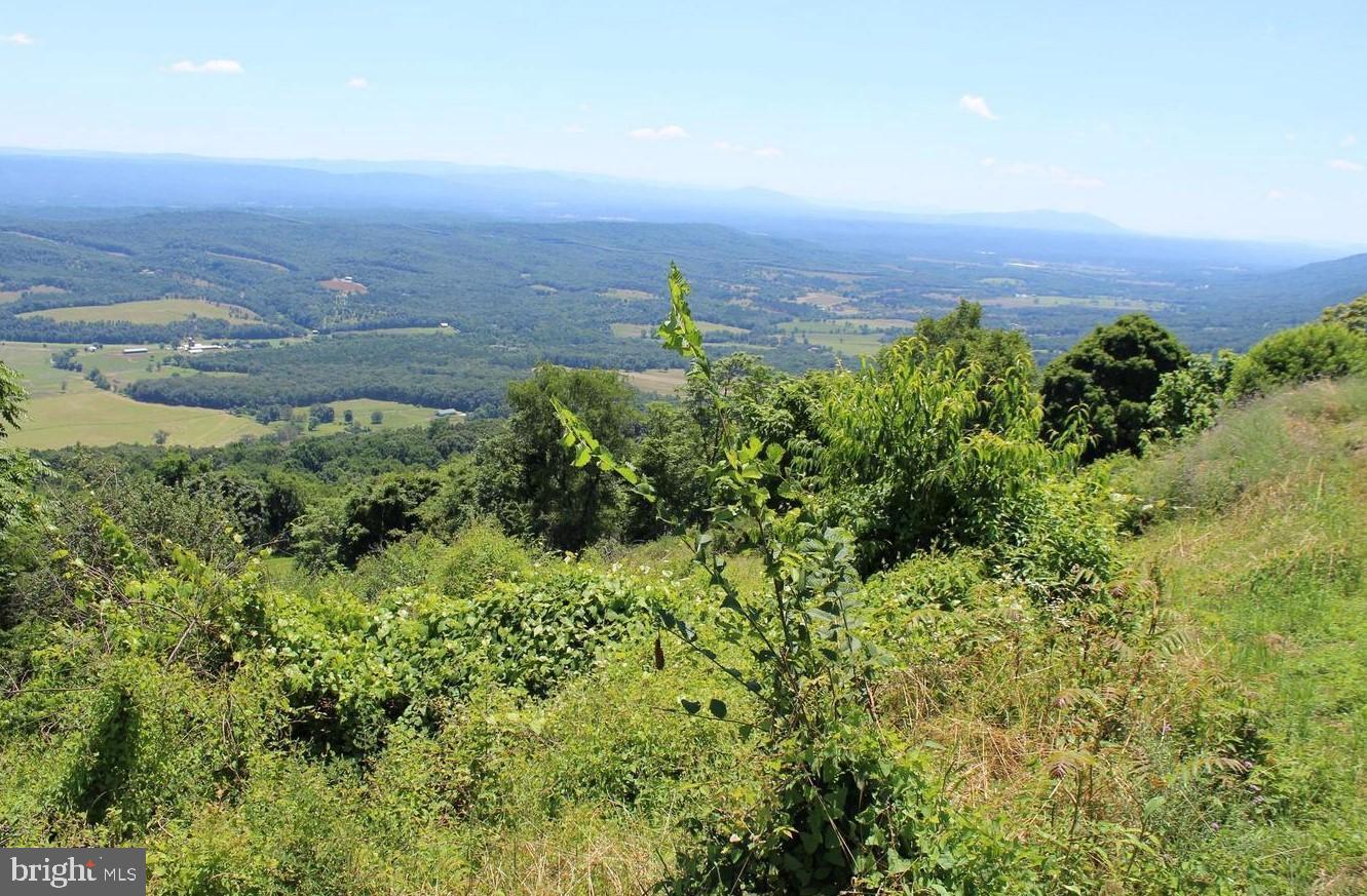 土地,用地 为 销售 在 Short Gap, 西弗吉尼亚州 26726 美国