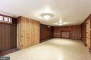 Finished Rec Rm in basement - 11723 ROBINWOOD DR, HAGERSTOWN