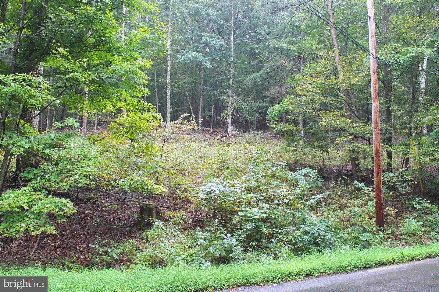 Additional photo for property listing at Fish Hatchery Rd Berkeley Springs, West Virginia 25411 United States