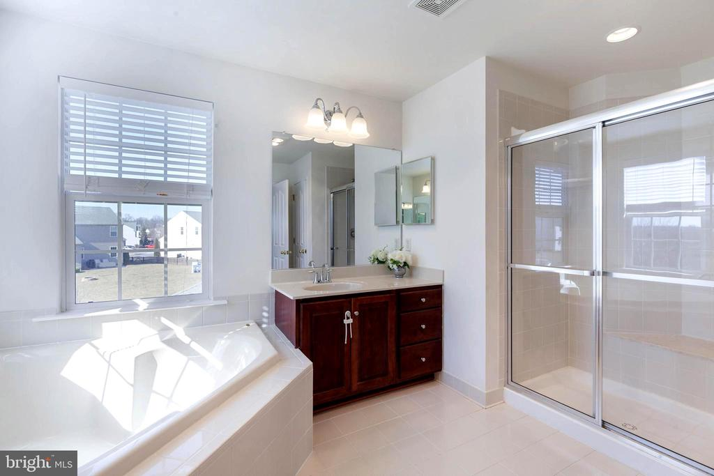 Master bath - soaking tub & seperate shower - 18218 ROCKLAND DR, HAGERSTOWN