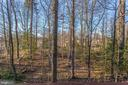 Now there is a view, over half acre lot - 4800 JENNICHELLE CT, FAIRFAX