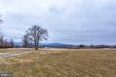 Open Space View and the Blue Ridge Mountains - 21562 GREENGARDEN RD, UPPERVILLE
