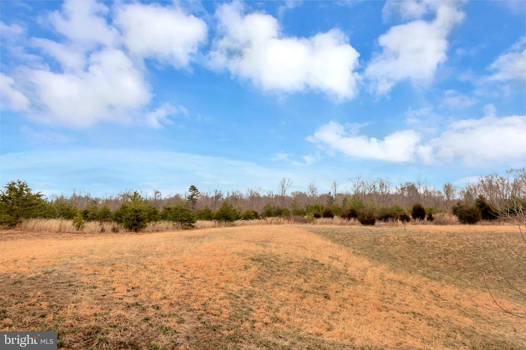 Scenic Meadow View - 2345 SILVER FOX WAY, LOCUST GROVE
