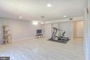 Finished Basement - 38 RIPLEY RD, STAFFORD