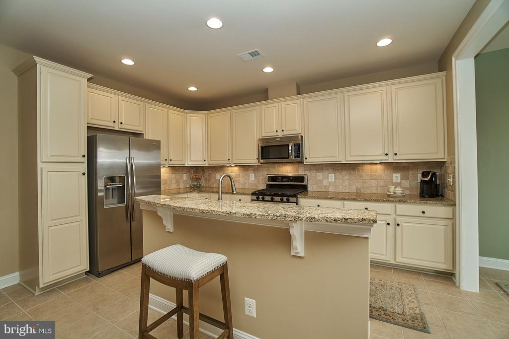 Recessed lighting and stainless steel appliances - 20639 ERSKINE TER, ASHBURN