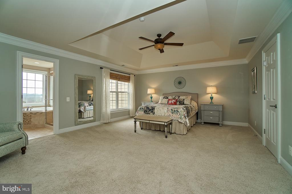Grand master bedroom with tray ceiling - 20639 ERSKINE TER, ASHBURN