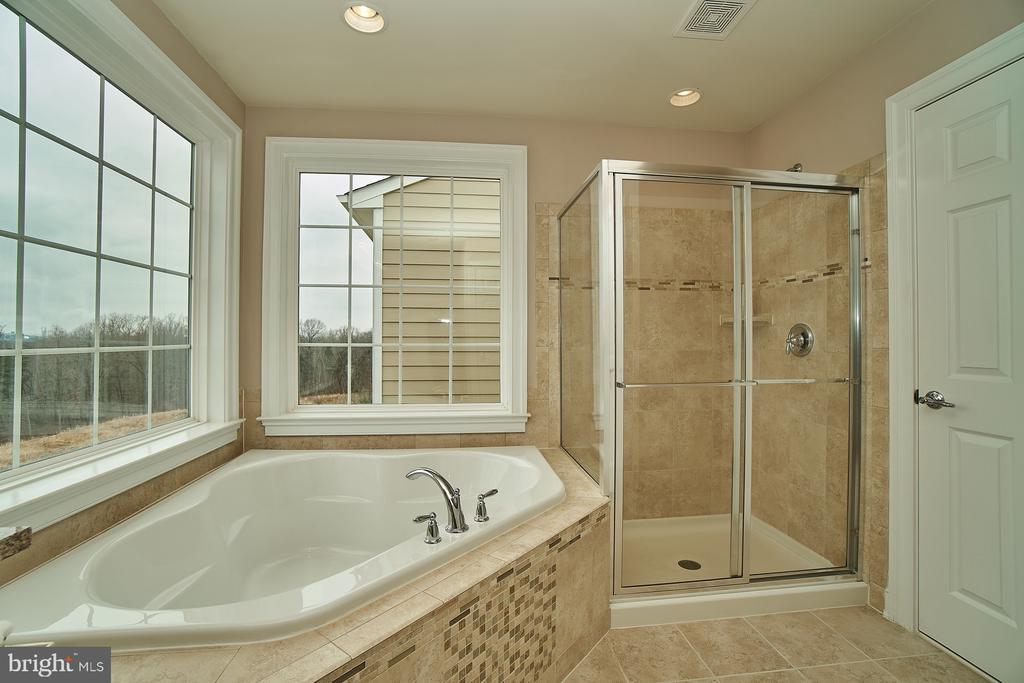 Master bath- soaking tub and separate shower - 20639 ERSKINE TER, ASHBURN