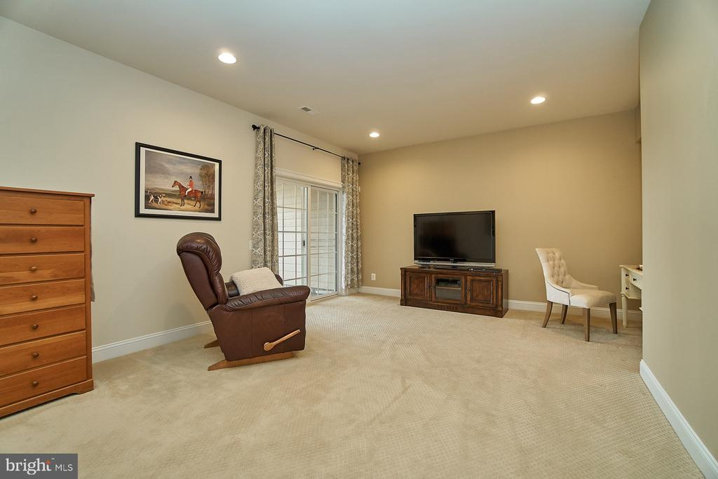 Full finished walk-out lower level - 20639 ERSKINE TER, ASHBURN