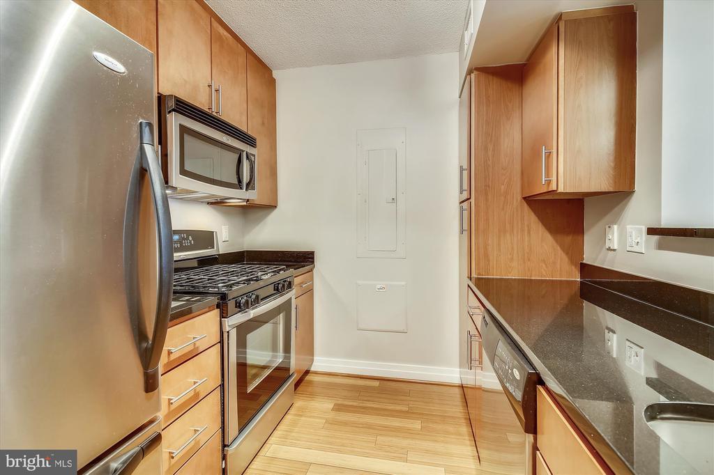 Stainless/Granite Kitchen - 915 E ST NW #705, WASHINGTON