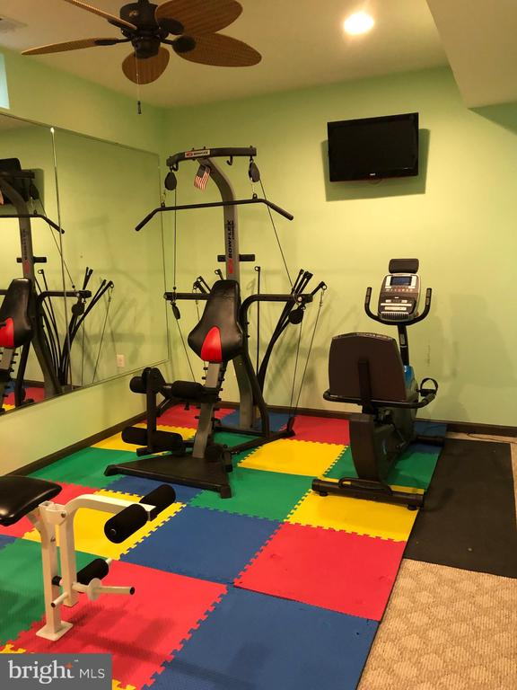 Gym with Equipment - 22767 SWEET ANDREA DR, BRAMBLETON