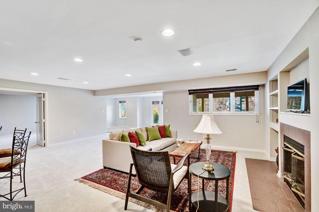 Lower rec room - 1466 WATERFRONT RD, RESTON