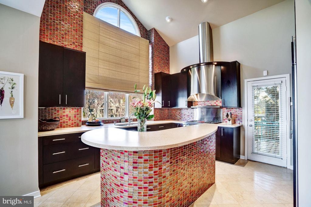 Kitchen with high end Wolf range and Sub Zero ref. - 1466 WATERFRONT RD, RESTON