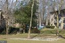 Wooded area all around - 4917 AMERICANA DR #E, ANNANDALE