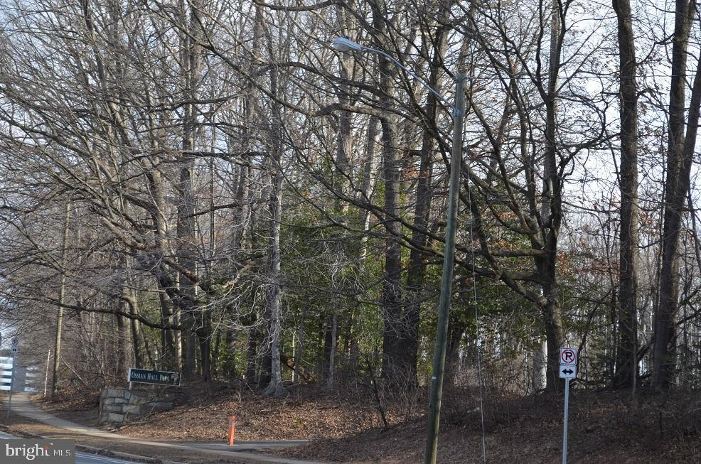 Beautiful park like setting - 4917 AMERICANA DR #E, ANNANDALE