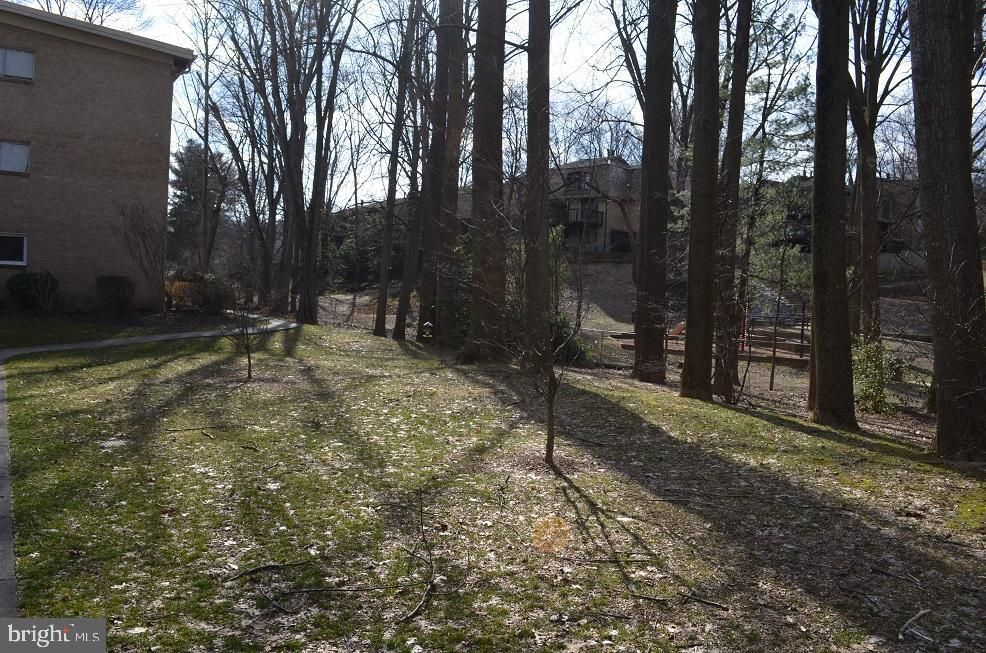 Many wooded areas - 4917 AMERICANA DR #E, ANNANDALE