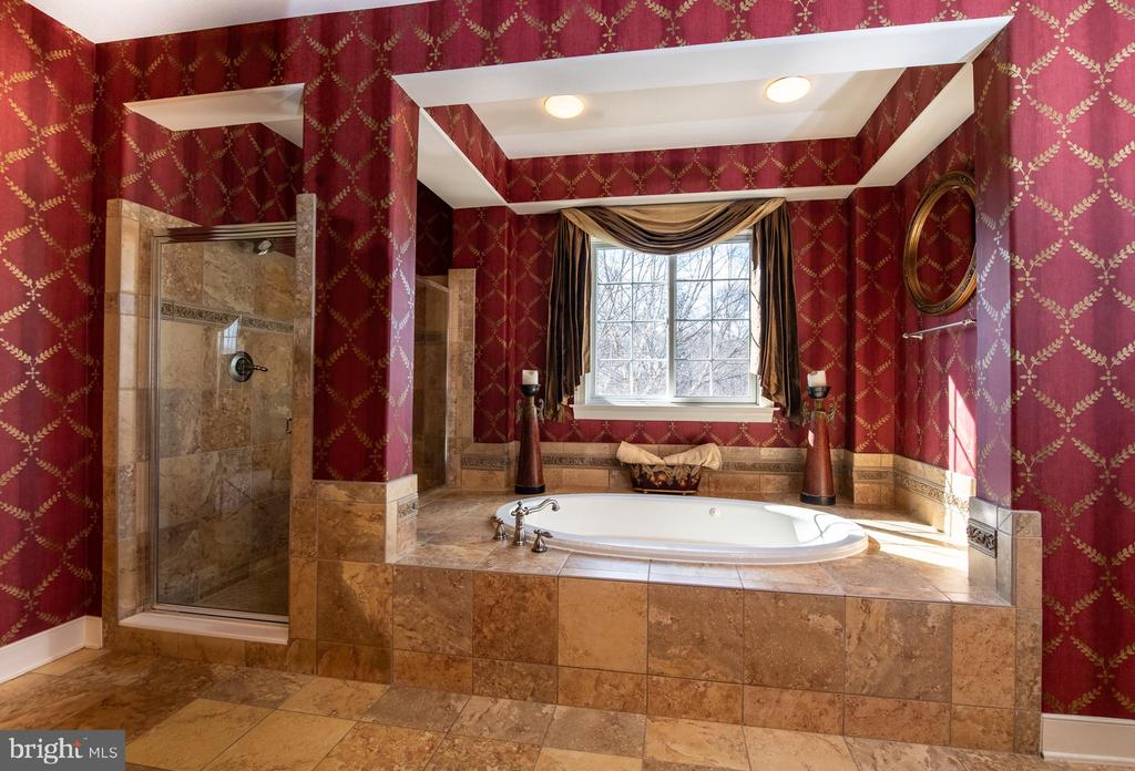 Master bath with jetted tub. - 21883 KNOB HILL PL, ASHBURN