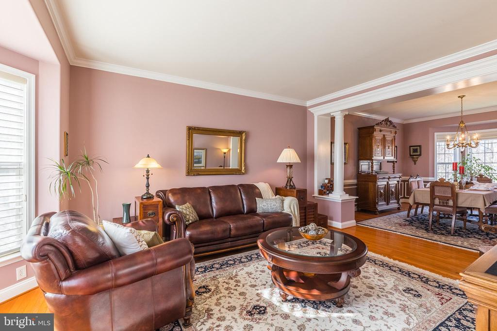 Sunny Living Room! - 37 SENTINEL RIDGE LN, STAFFORD