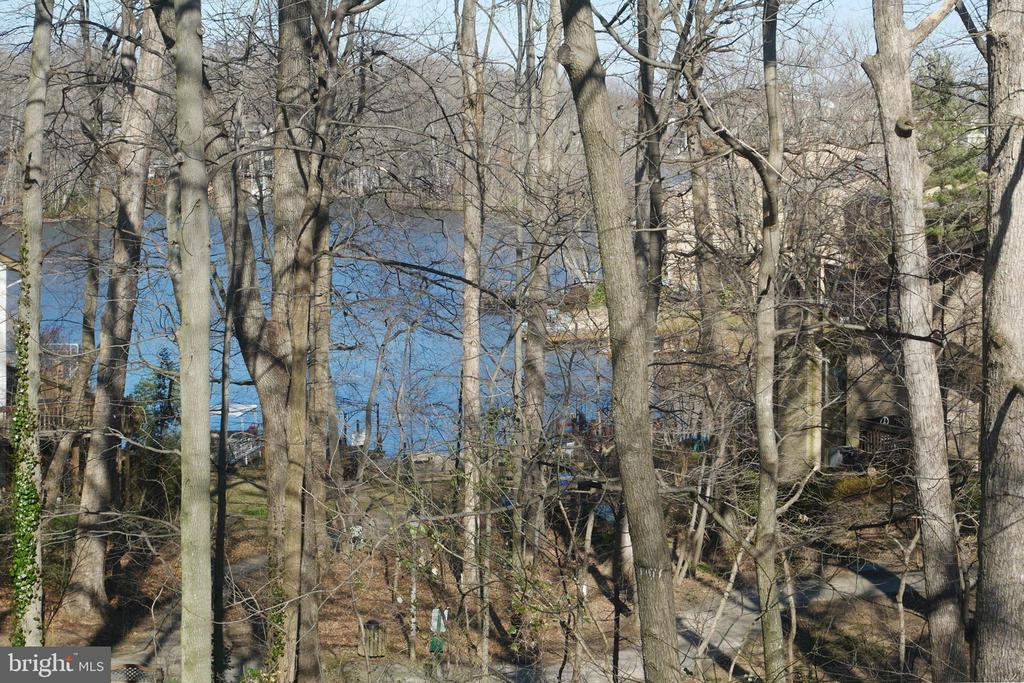 View of Water & Road Side Bench from MBR - 2047 CHADDS FORD DR, RESTON