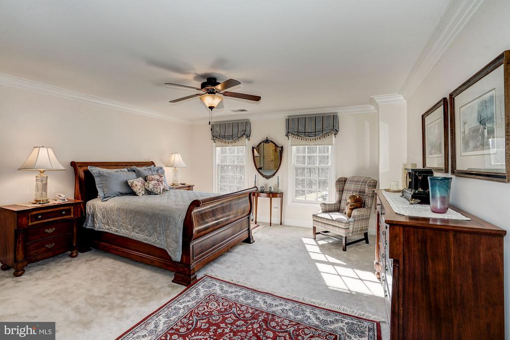 2nd Bedroom on 2nd level - 3150 ARIANA DR, OAKTON