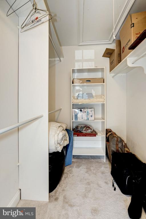 Large Walk-in closet in 2nd bedroom - 3150 ARIANA DR, OAKTON