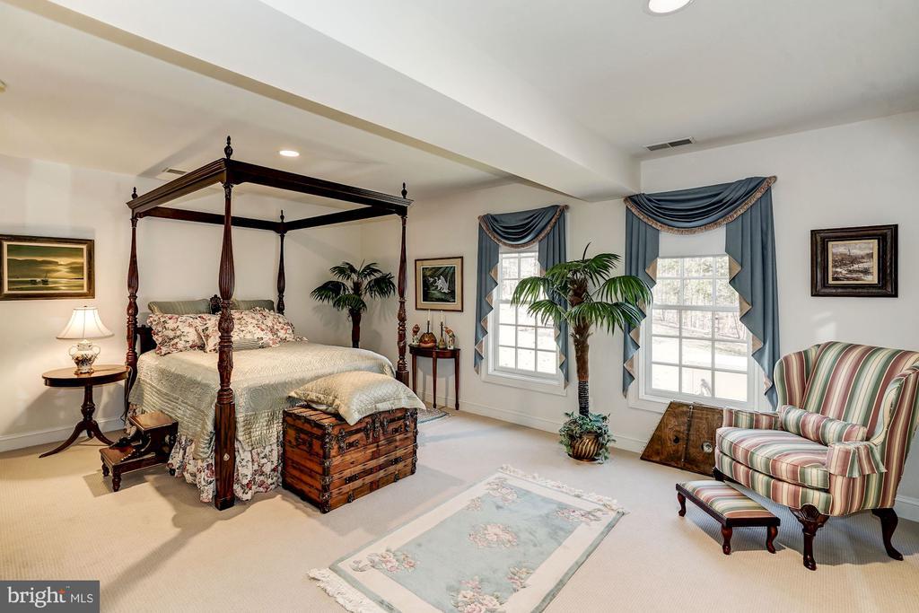 Sun-filled 5th Bedroom in Basement - 3150 ARIANA DR, OAKTON
