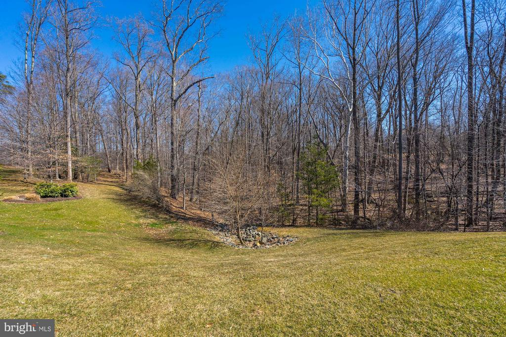 Private lot overlooks woods - 3150 ARIANA DR, OAKTON