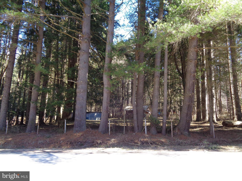 Additional photo for property listing at Sunnyside Oakland, Maryland 21550 United States