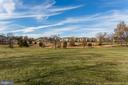 One of the Largest Back Yards in BCC! - 19979 PALMER CLASSIC PKWY, ASHBURN