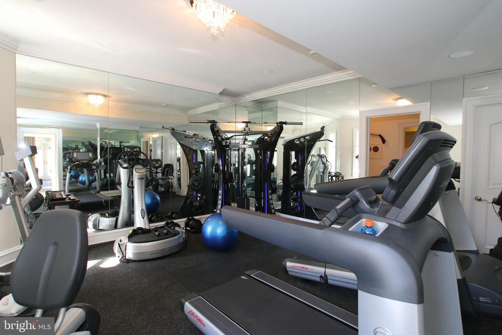 Huge exercise room / gym with mirrors - 529 SPRINGVALE RD, GREAT FALLS