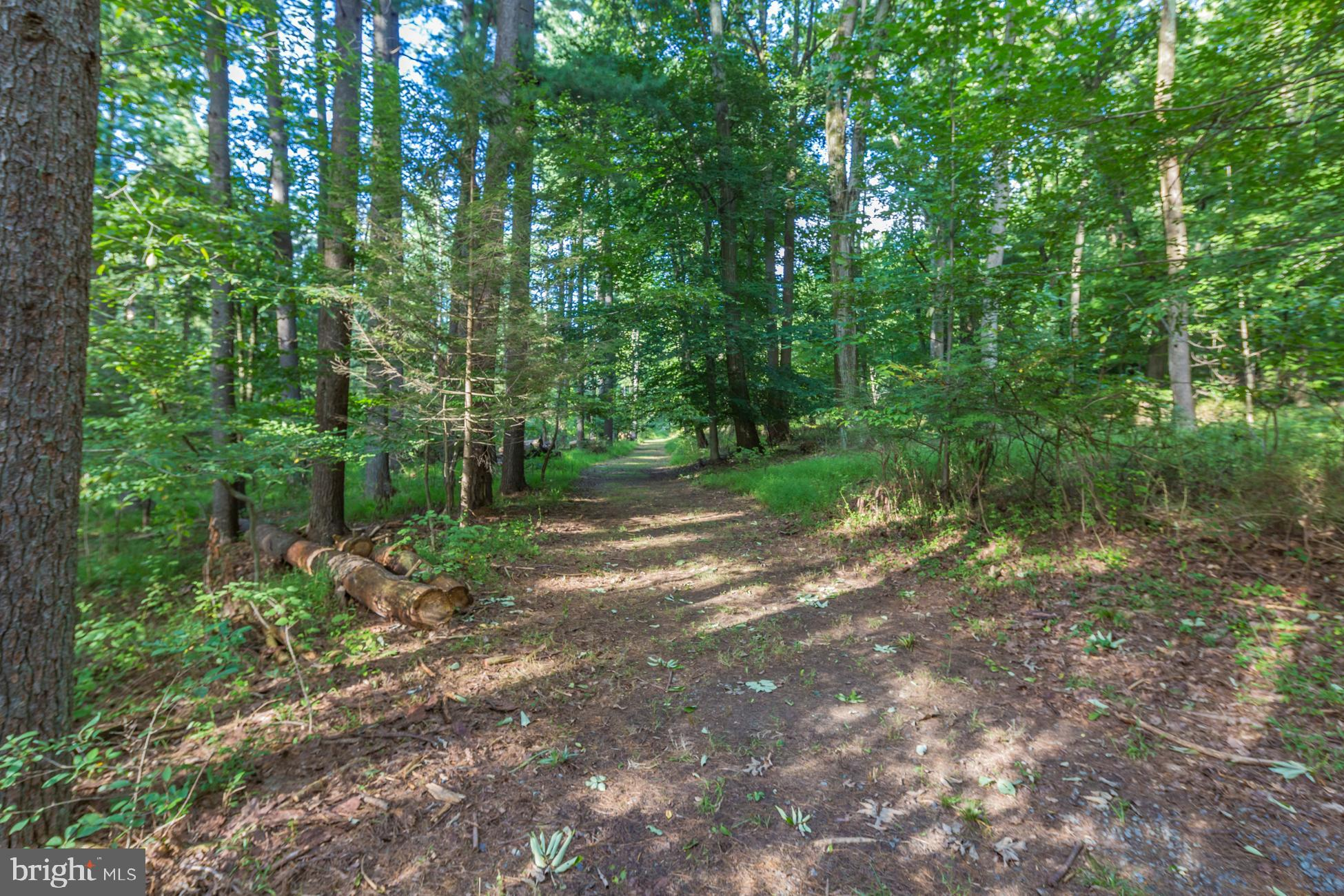 Extensive trails on the property start here.
