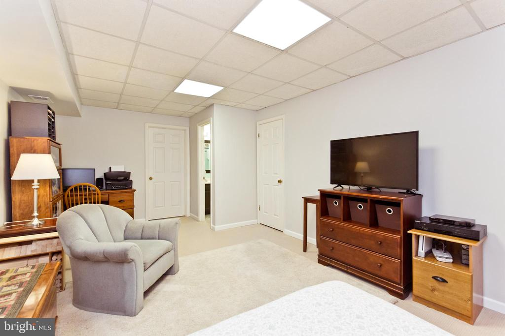Rec-room - 3813 9TH RD S, ARLINGTON