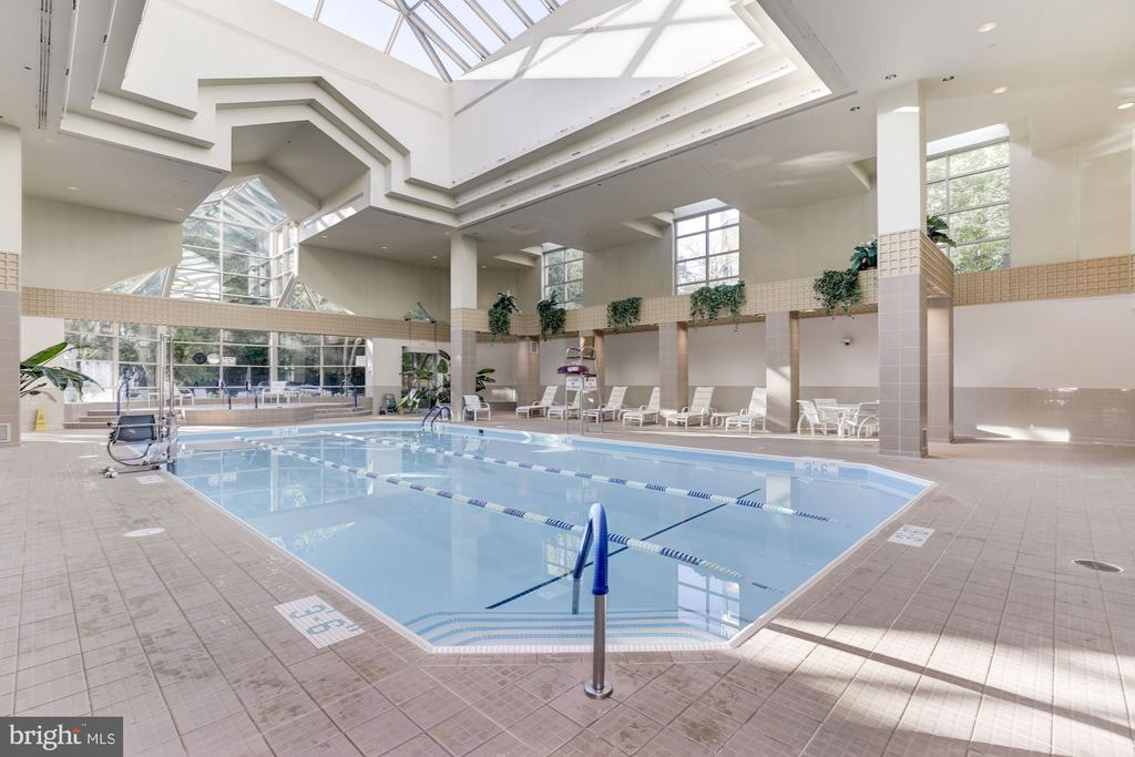 Indoor pool - 5630 WISCONSIN AVE #807, CHEVY CHASE