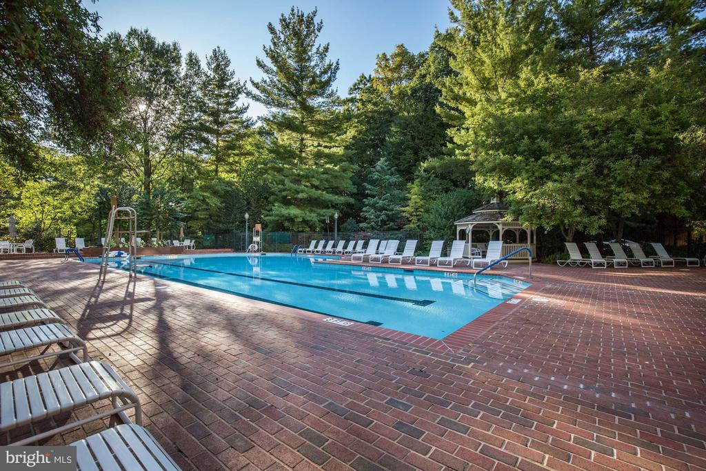Oversized outdoor pool - 5630 WISCONSIN AVE #807, CHEVY CHASE